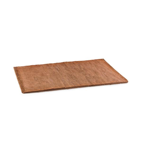 Plancha Bescuit Sacher 15 mm. 58x38